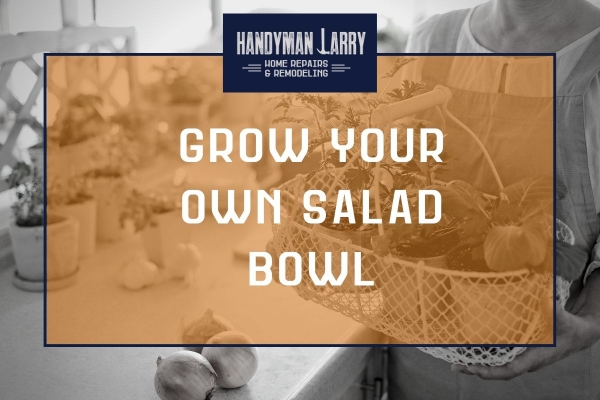 Grow your own salad