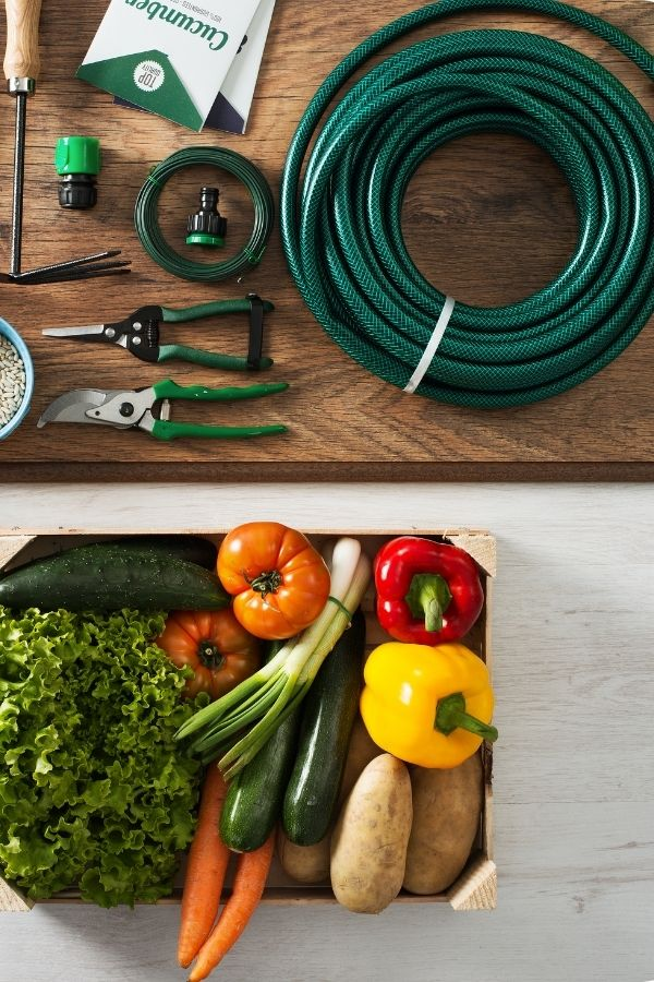 Fathers Home and garden subscription box